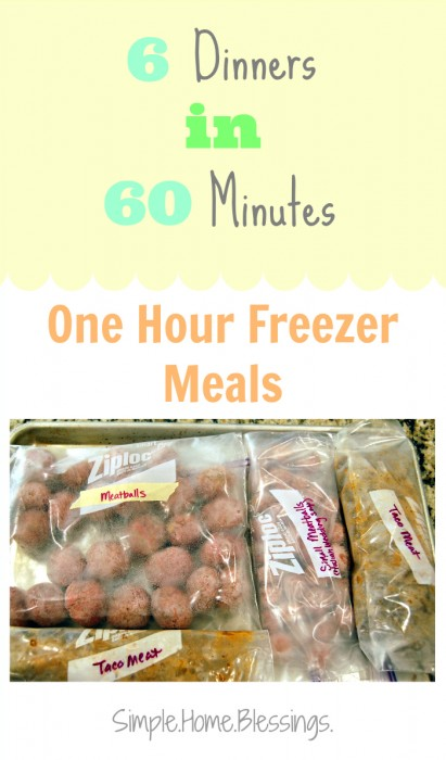6 Dinners in 60 Minutes Freezer Cooking