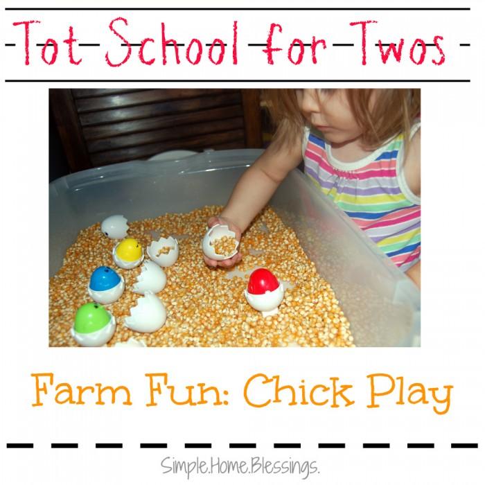 Farm Fun Chick Play