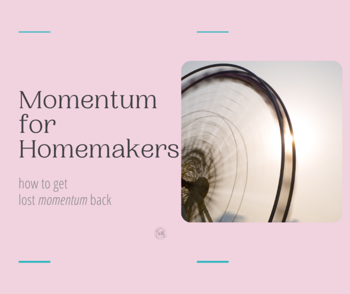 Momentum for homemakers - how to gain momentum when you have lost it in your home and the mess is overwhelming.
