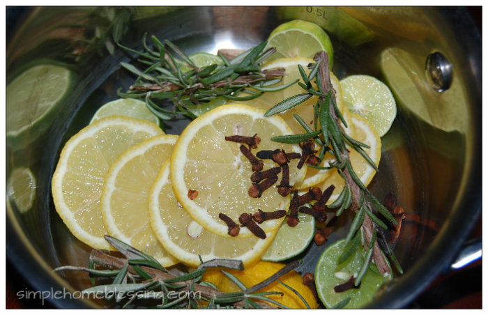Citrus Rosemary Home Scent