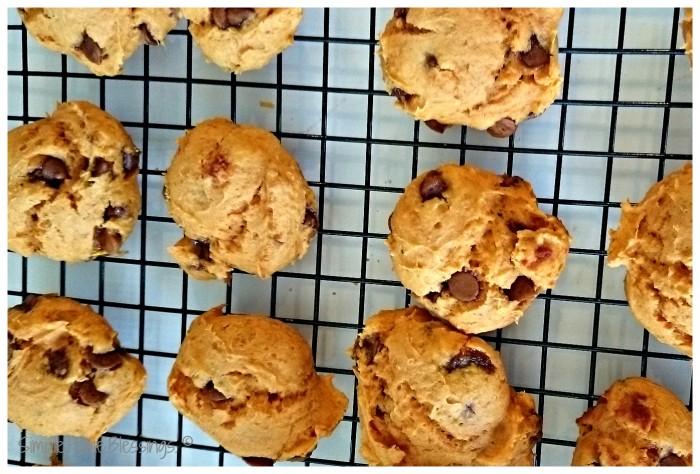Pumpkin Cinnamon Chip Cookies - so simple recipe for fall