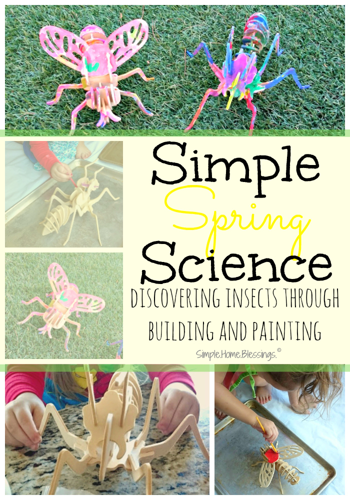 discover insects through building and painting, a simple science activity for toddlers/preschoolers