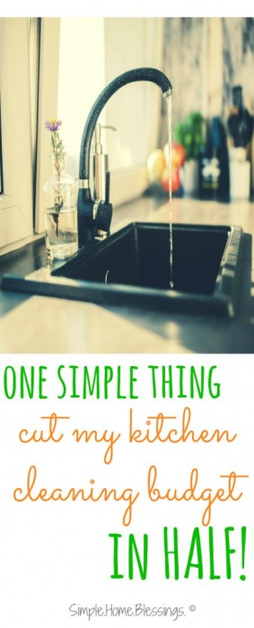 One simple thing I did to cut my kitchen budget in half. Such a simple, green way to save some money!