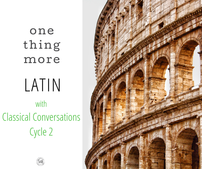 how to add one thing more to Classical Conversations Cycle 2 Latin to prepare your students for future Latin success.  Great list of resources ranked by age and grade