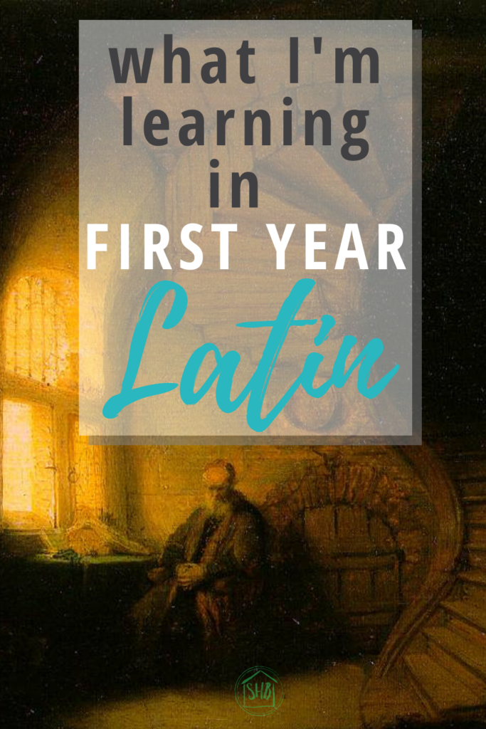 """First Year Latin observations - discussion of the Latin word """"verbum"""""""