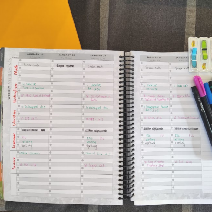 big picture planning for our homeschool - planning the year at a glance - a peek inside my planner