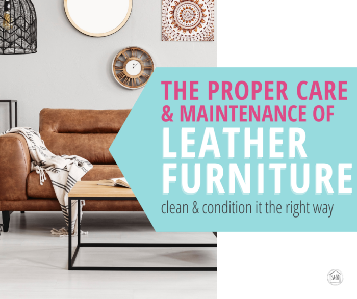 Proper Care And Maintenance Of Leather Furniture Simple Home Blessings