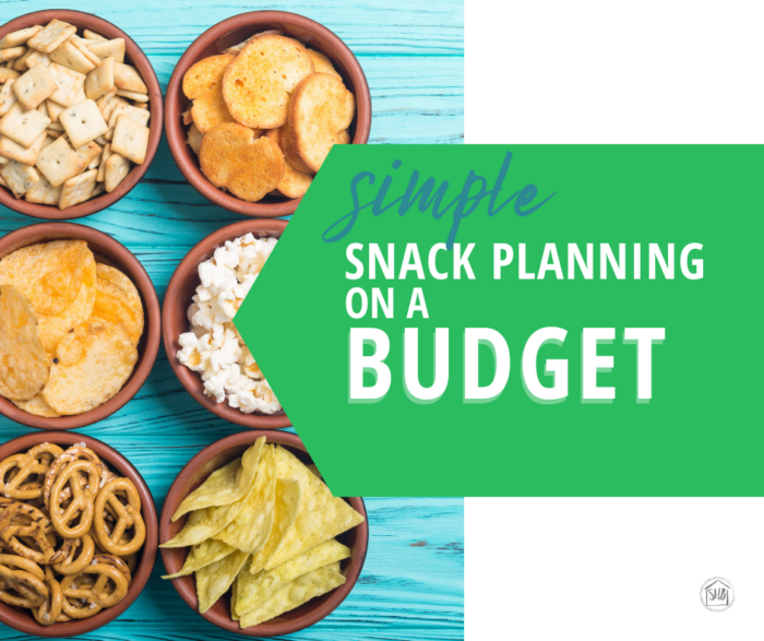 5 simple tips to help you with snack planning without spending too much at the store and having snacks go to waste.