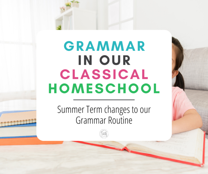 Our choices for learning grammar during our Summer Term in our homeschool.  Keeping grammar knowledge sharp and FUN!