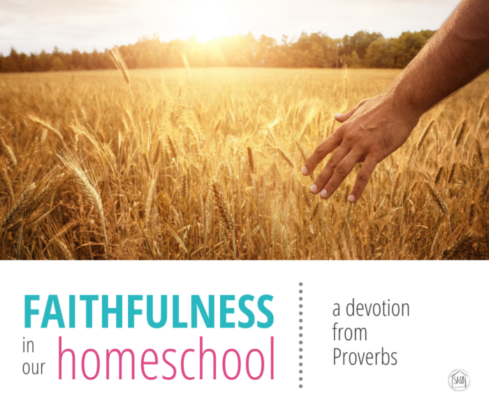 a simple devotional for homeschool moms discussing faithfulness in our homeschool - to what shall we be faithful?