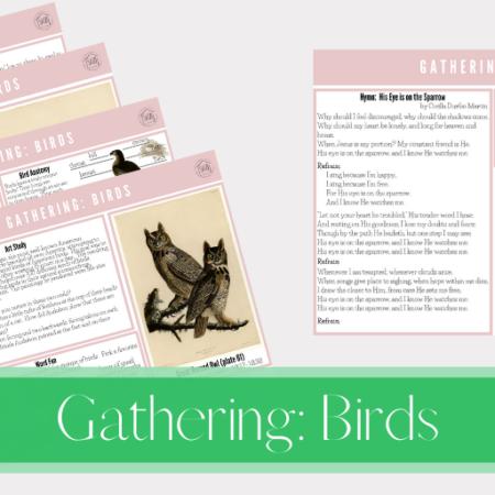 Gathering: Birds